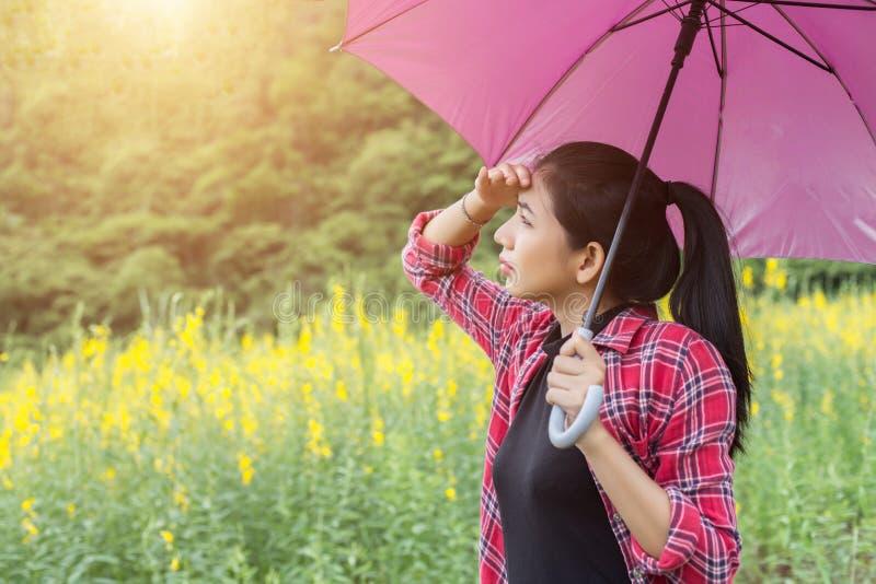 Jeune belle femme tenant le parapluie rouge dans le domaine de fleur et le fond jaunes de montagne photos stock