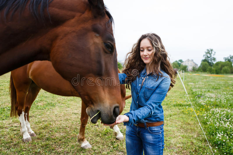 Jeune belle fille alimentant un cheval photos libres de droits