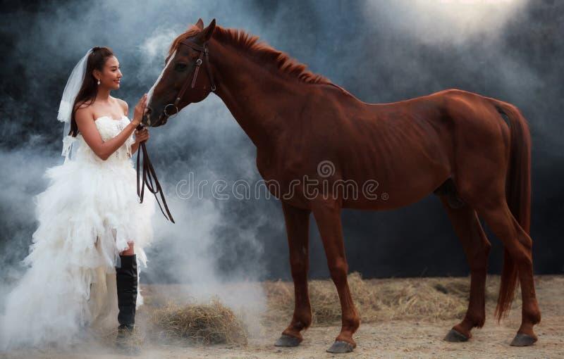 Jeune belle jeune mariée de beauté dans le support blanc de costume de mariage de mode avec le cheval beau sur le fond noir photographie stock