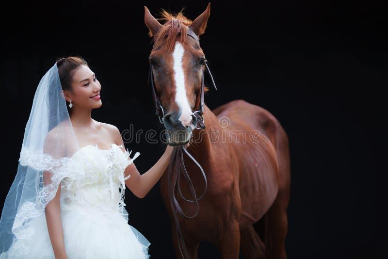 Jeune belle jeune mariée de beauté dans le support blanc de costume de mariage de mode avec le cheval beau sur le fond noir photos libres de droits