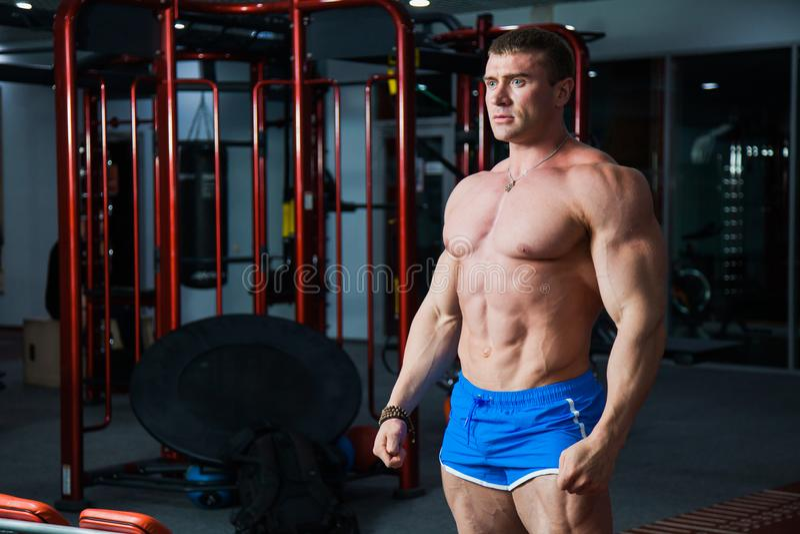 Jeune bodybuilder démontrant le corps musculaire fort au gymnase images libres de droits