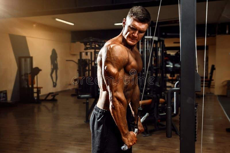 Jeune Bodybuilder faisant l'exercice pour le triceps images libres de droits