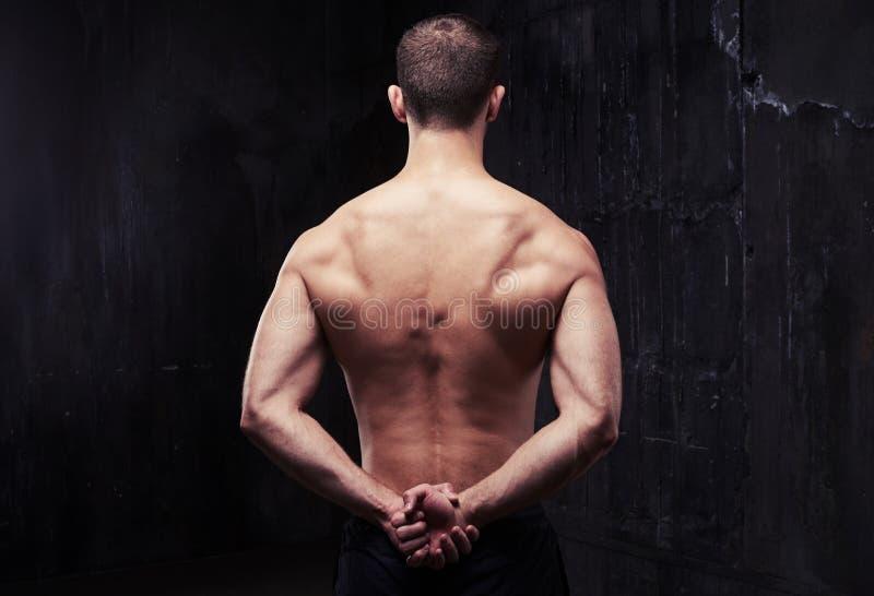 Jeune bodybuilder fort en bonne santé démontrant son dos musculaire image stock