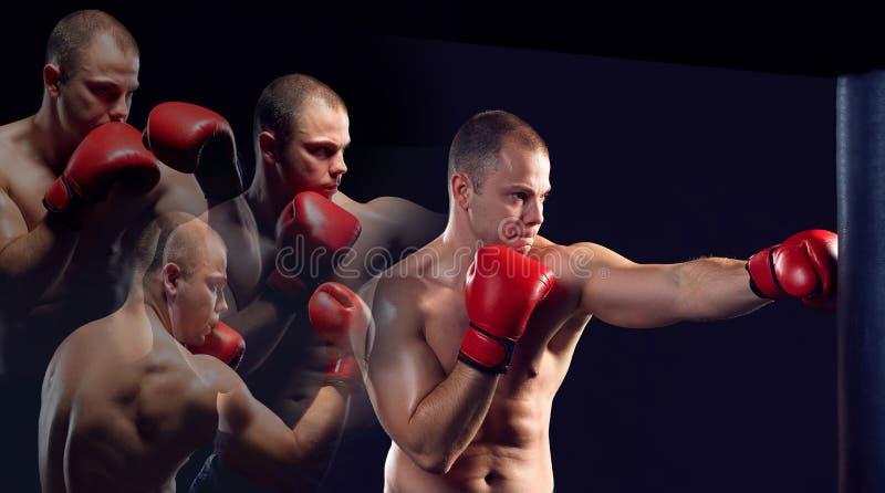 Jeune boxe de boxeur photos stock