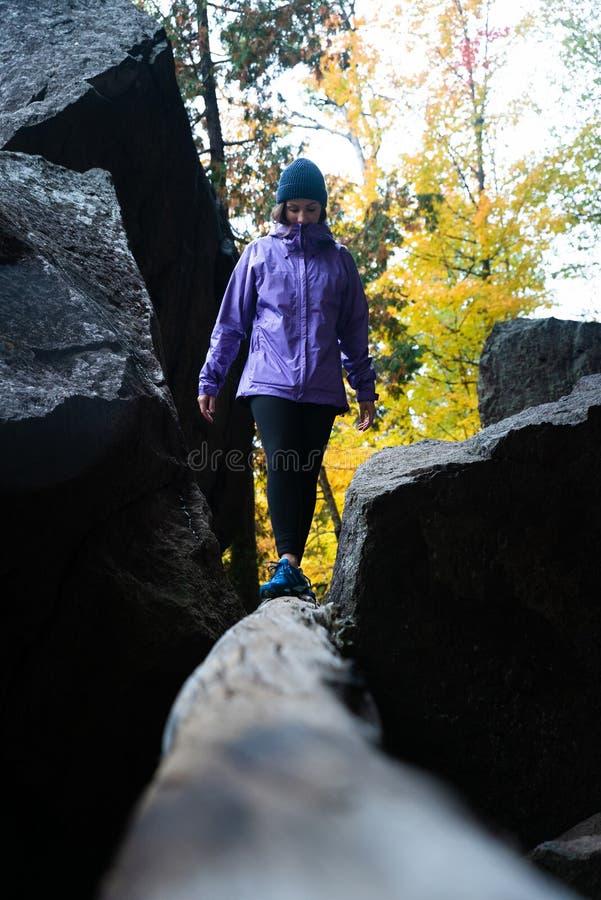 Jeune Caucasien actif avec l'imperméable pourpre marchant sur l'arbre tombé mort un jour pluvieux d'automne photos libres de droits