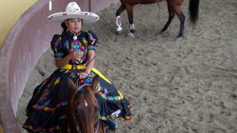 Jeune cavalier mexicain d'adelita image libre de droits