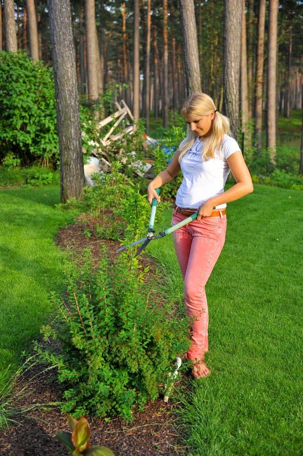 Jeune centrale de jardinage de garniture de femme dans le jardin images stock