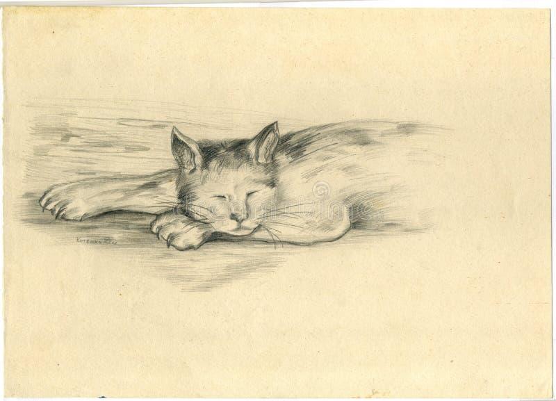 Jeune chat qui dort, dessin au crayon illustration stock
