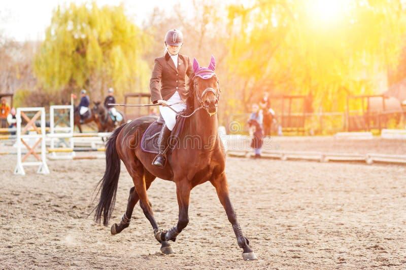Jeune cheval d'équitation de femme de cavalier à la concurrence images stock