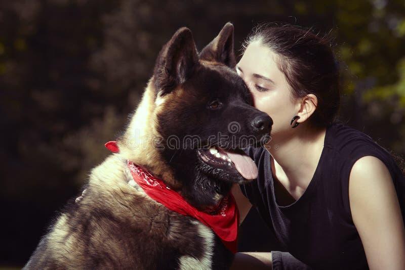 Jeune chiot masculin du chien d'Akita d'Américain embrassé par sa dame de propriétaire images libres de droits