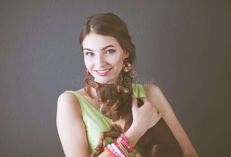Jeune chiwawa attrayant de chien de participation de femme, sur le fond gris photo stock