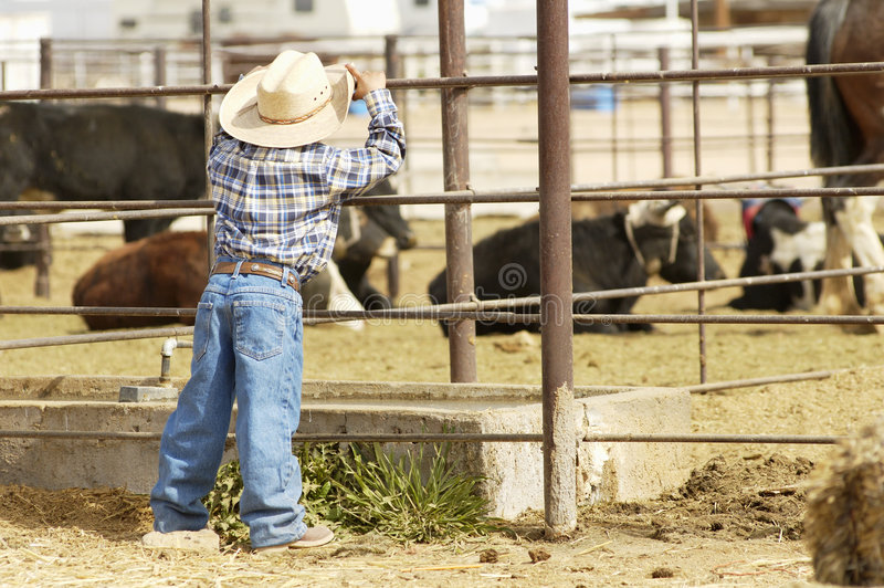 Download Jeune cowboy photo stock. Image du bareback, danger, animaux - 732150