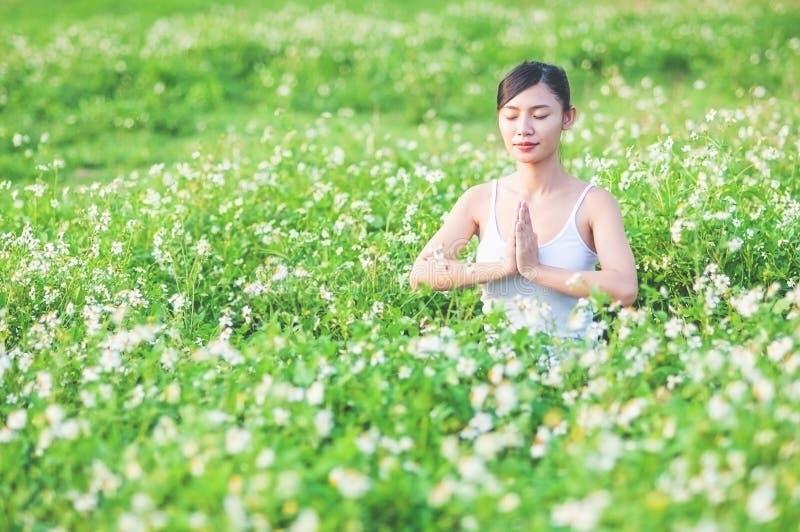 Jeune dame faisant l'exercice de yoga dans le domaine vert avec le petit secteur extérieur de fleurs blanches montrant le calme p image libre de droits