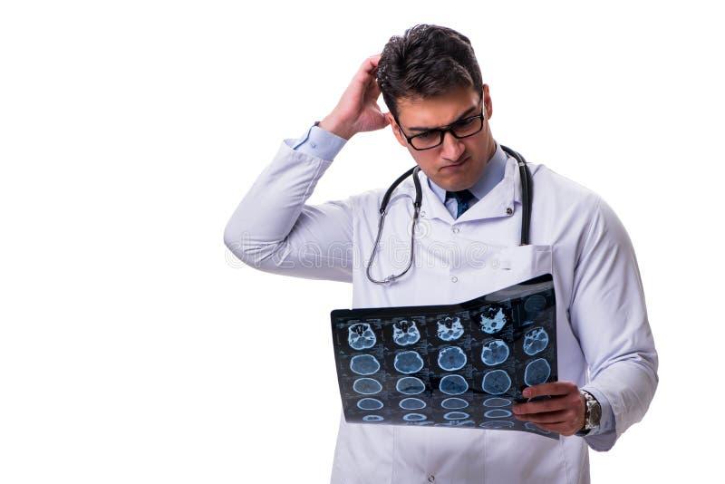 Jeune docteur masculin jugeant une radiographie d'isolement sur le backgro blanc images libres de droits