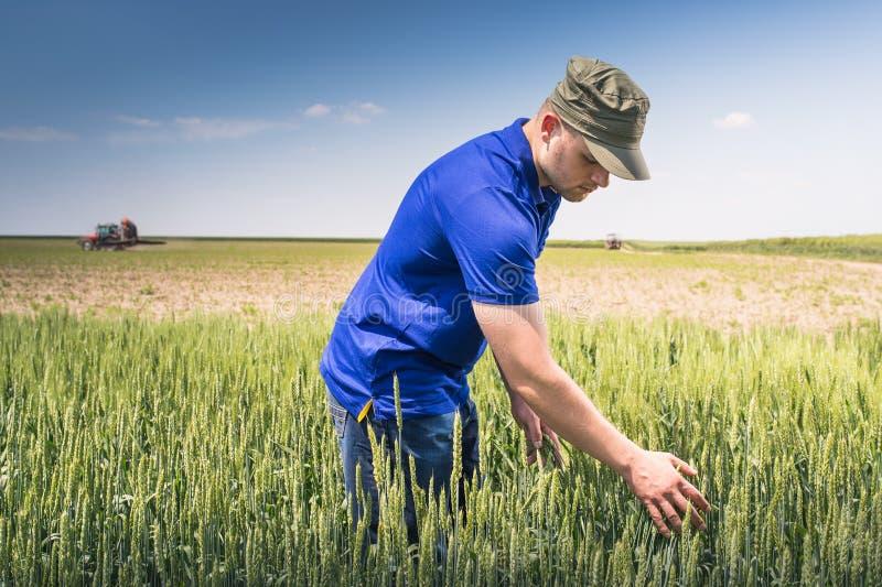 Jeune exploitant agricole dans un domaine photos libres de droits