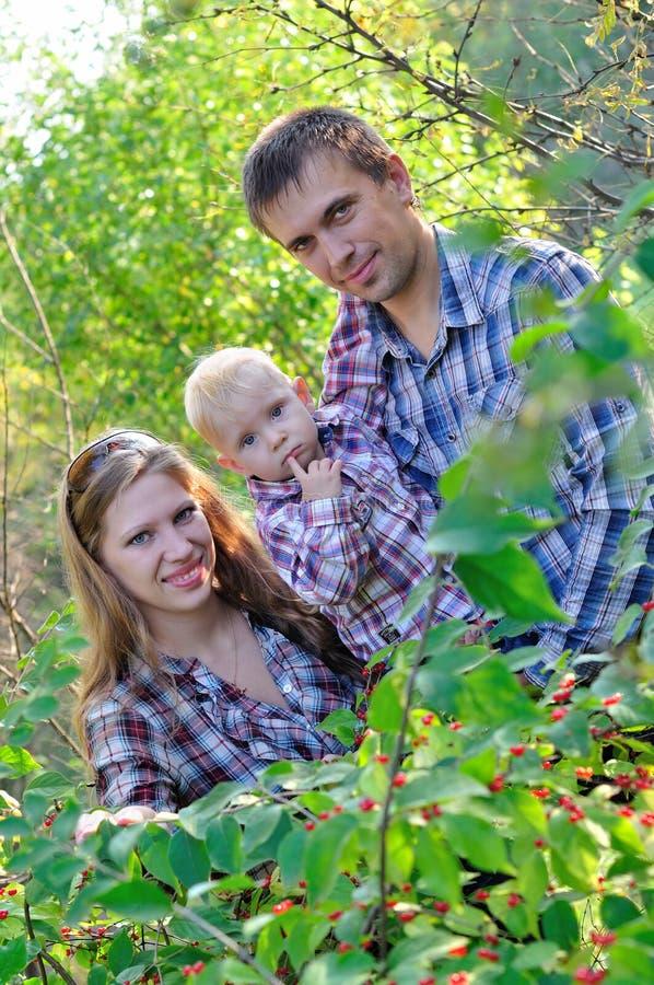 Jeune famille dans la forêt d'automne photo libre de droits