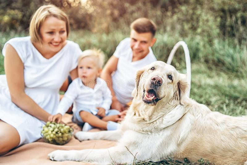 Jeune famille mignonne sur le pique-nique avec le chien photo libre de droits