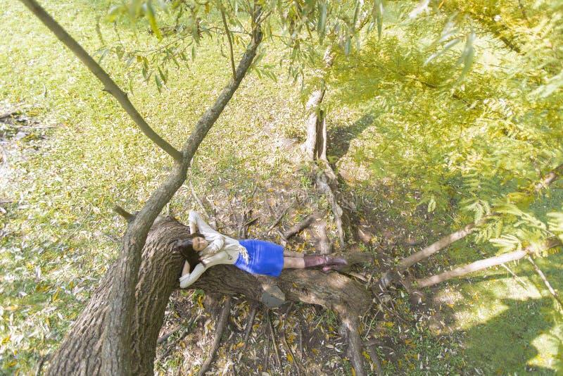 Jeune femme à la forêt d'automne images stock