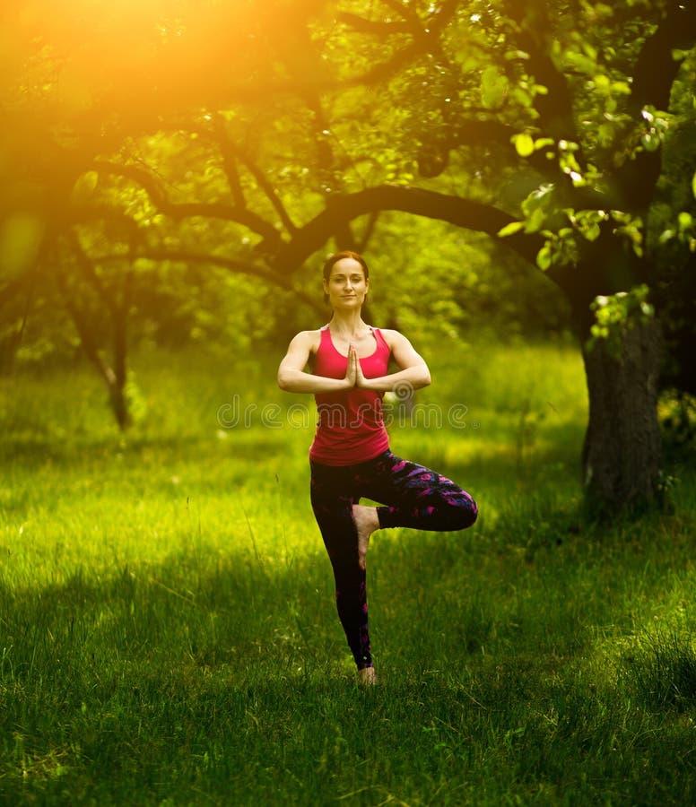 Jeune femme équilibrant dans le yoga de pratique de pose d'arbre photographie stock