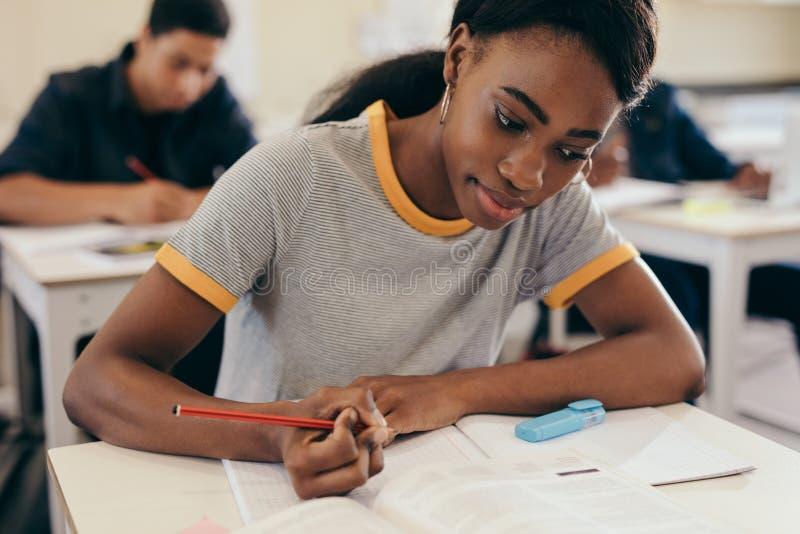 Jeune femme étudiant à l'université image libre de droits