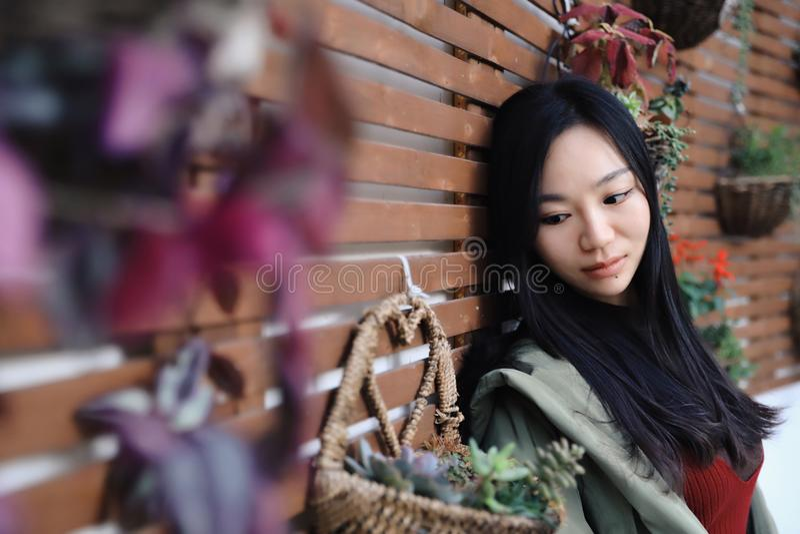 Jeune femme 15 images stock