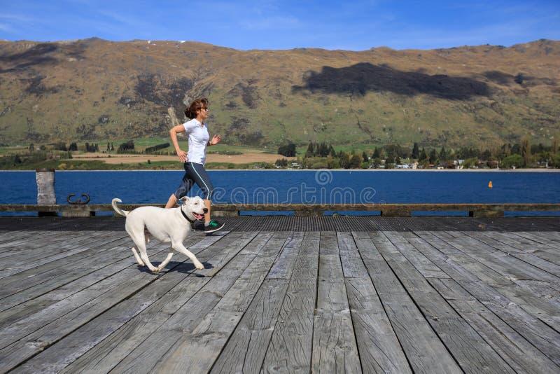 Jeune femme adulte courant avec son chien photos libres de droits