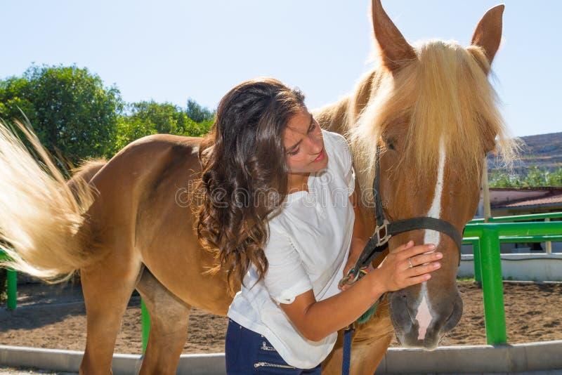 Jeune femme attirante toilettant un cheval au photographie stock libre de droits