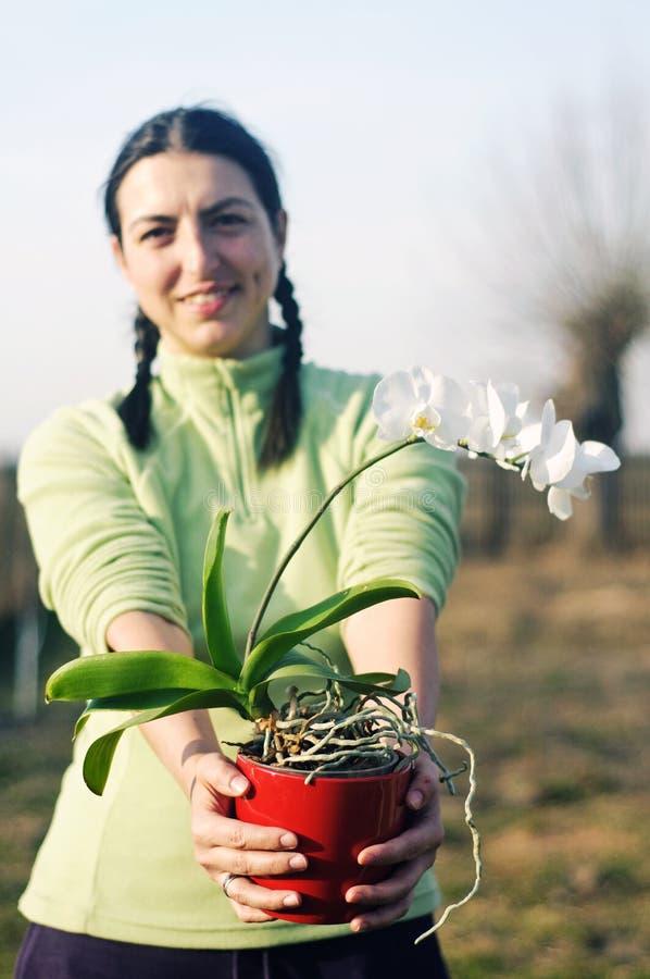 Jeune femme avec la fleur photographie stock
