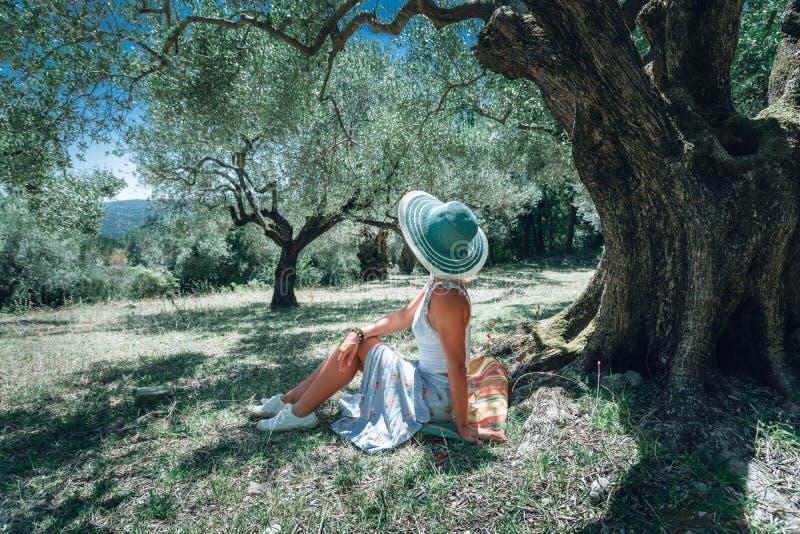 Jeune femme avec le chapeau du soleil de paille sous un olivier sur un fond de paysage méditerranéen idyllique Forêt olive photo stock