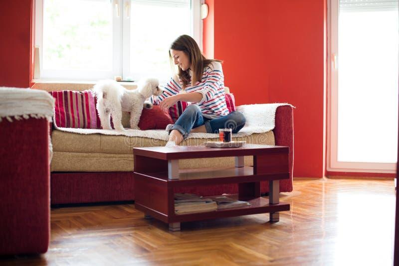 Jeune femme avec le chien mignon images stock