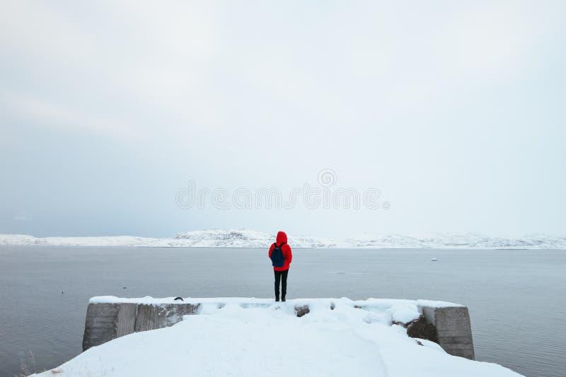 Jeune femme célibataire se tenant prêt l'océan arctique images libres de droits