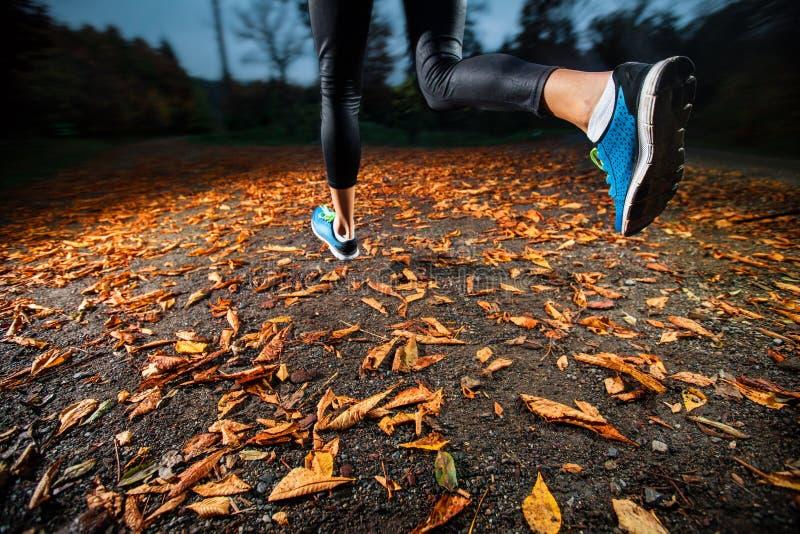 Jeune femme courant dans les feuilles d'automne de début de soirée photographie stock libre de droits
