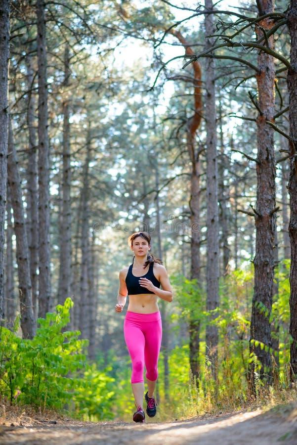 Jeune femme courant sur la traînée dans le beau pin sauvage Forest Active Lifestyle Concept L'espace pour le texte photos stock