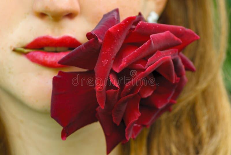 Jeune femme d'une chevelure rouge tenant une rose dans sa bouche photographie stock libre de droits