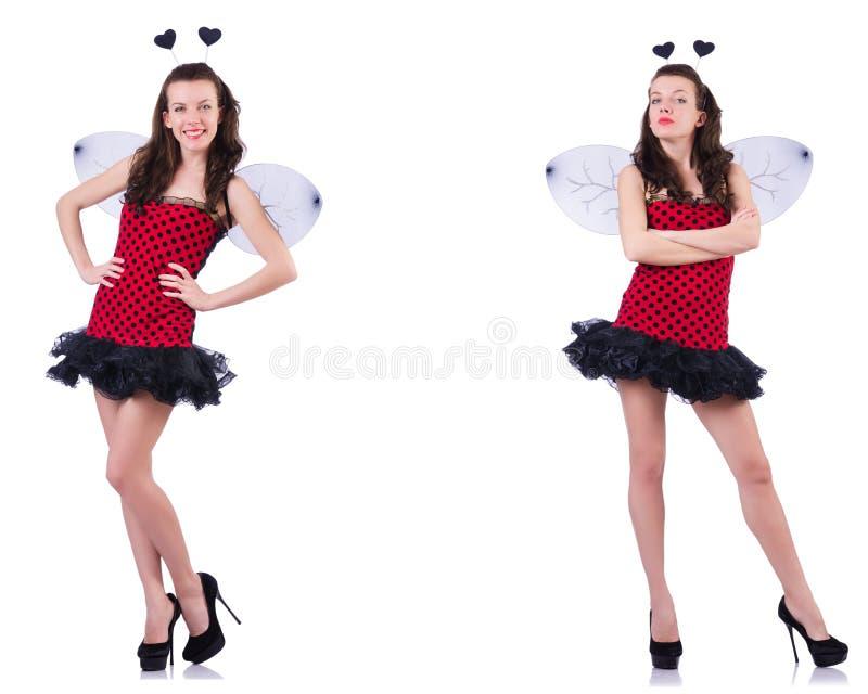 Jeune femme dans le costume d'abeille sur le blanc image libre de droits