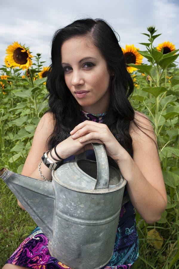 Jeune femme dans le domaine de tournesol photo libre de droits