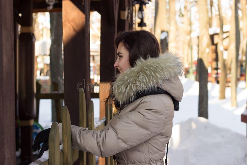 Jeune femme de beauté en parc d'hiver images stock