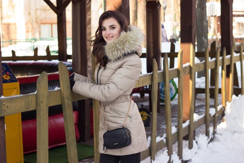 Jeune femme de beauté en parc d'hiver image stock