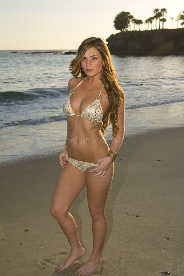 Jeune femme de Brunette sur la plage photos libres de droits