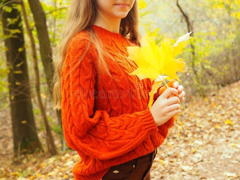 Jeune femme en parc d'automne, adolescente avec les feuilles jaunes images stock