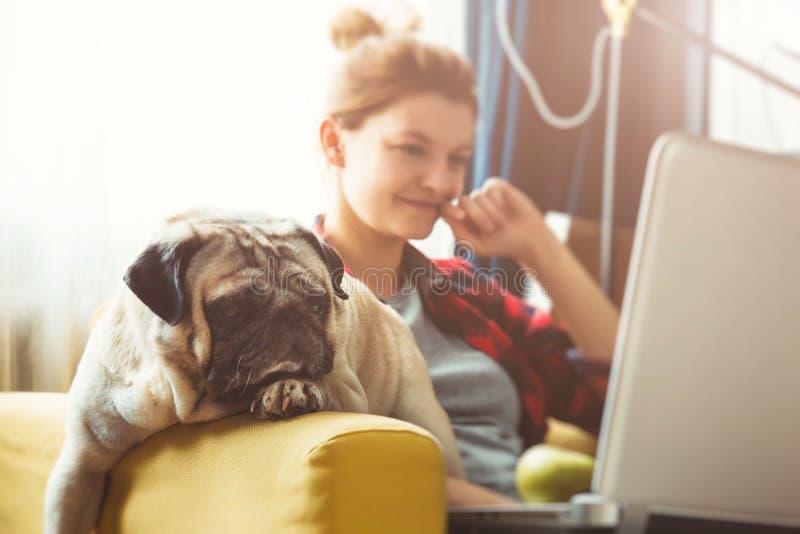 Jeune femme et chien avec l'ordinateur portable Travail à la maison Roquet photo libre de droits