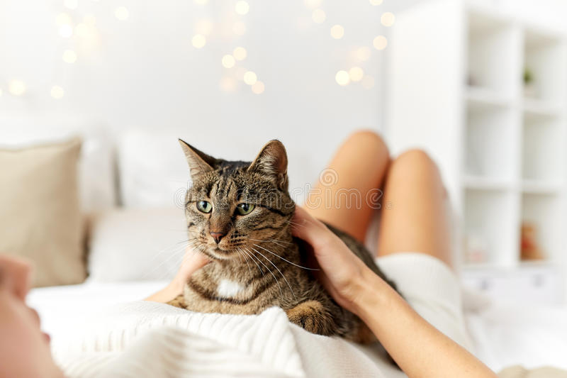 Jeune femme heureuse avec le chat se situant dans le lit à la maison images stock