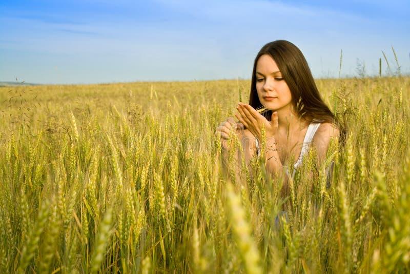 Jeune femme heureux dans le domaine photographie stock