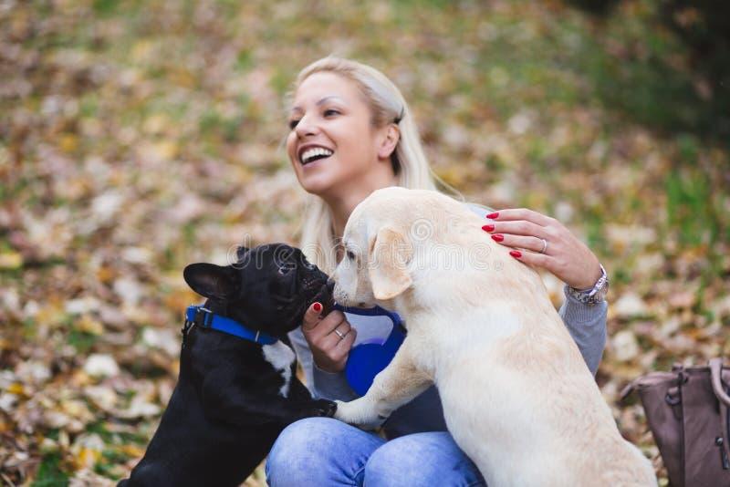 Jeune femme jouant avec ses chiens photo libre de droits