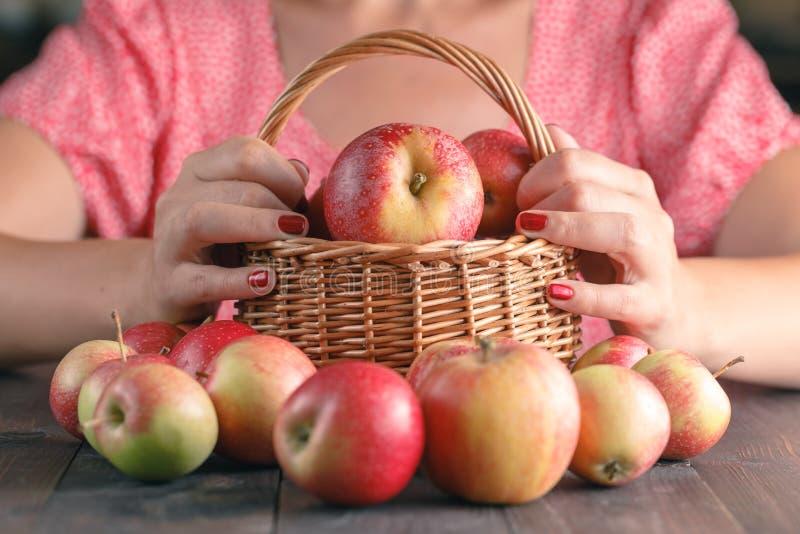 Download Jeune Femme Méconnaissable Dans La Chemise Rouge Moissonnant Des Pommes Image stock - Image du moisson, nature: 77154935