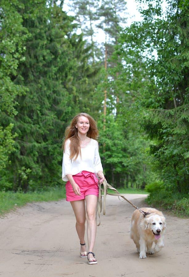 Jeune femme marchant avec le golden retriever image libre de droits