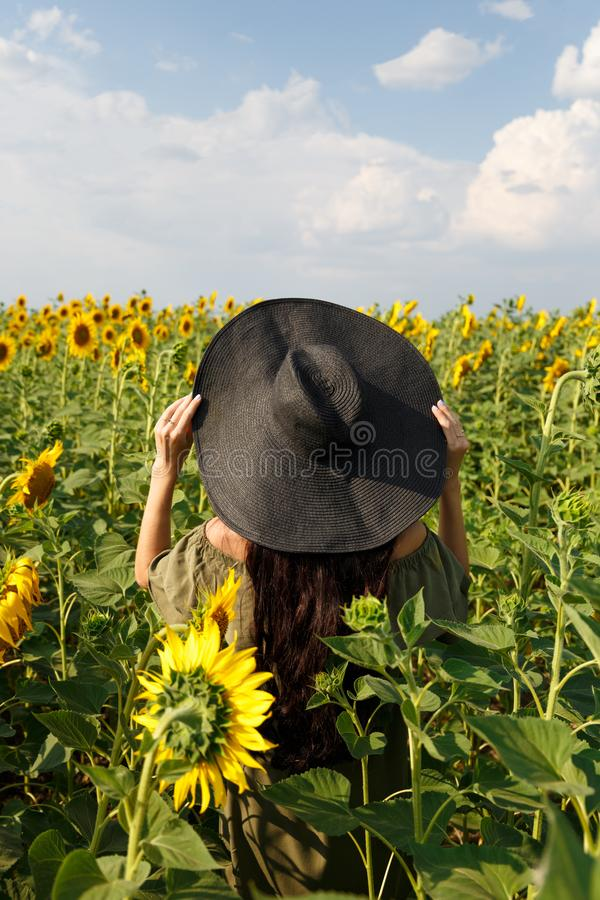 Jeune femme marchant dans le domaine avec des tournesols Belle jeune fille appr?ciant la nature sur le champ des tournesols au co photos stock