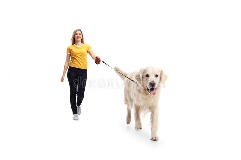 Jeune femme marchant un chien photo libre de droits