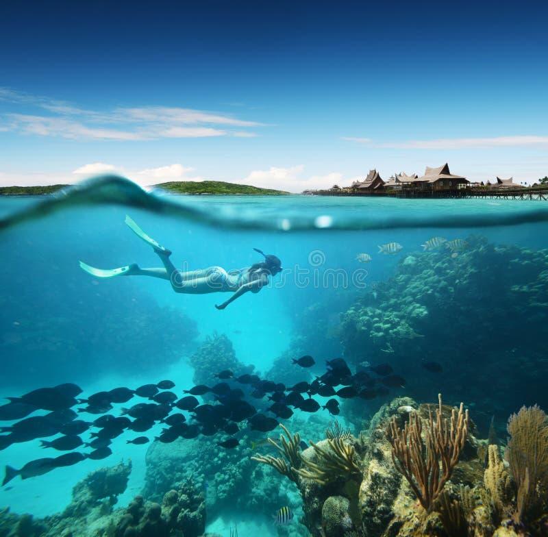 Jeune femme naviguant au schnorchel dans le récif coralien en mer tropicale photos stock