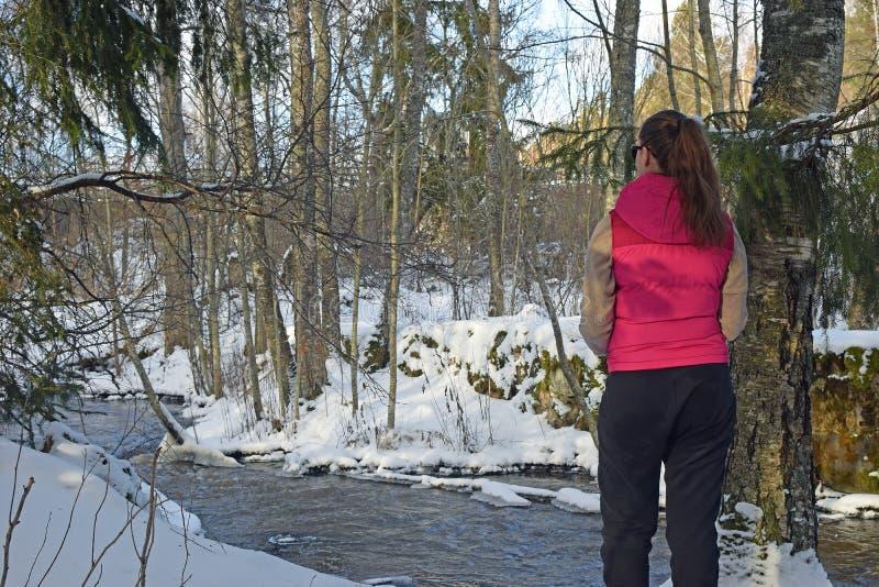 Jeune femme se tenant dans la forêt hivernale et observant une crique image libre de droits